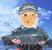 土佐清水市窪津の釣り情報