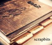scrapbits blog =  inspire =