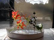 薔薇好き華道人のブログ