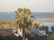 ロサンゼルスのビーチハウス生活便り