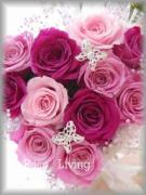 プリザーブドフラワーアレンジメント&ブーケ Rose Living