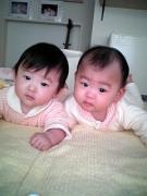 双子と。娘1娘2 家族がふえた