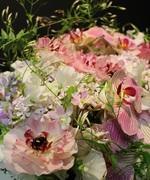 Flower-VANDA 花ブログ