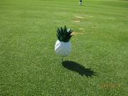 タイでゴルフ開眼日記