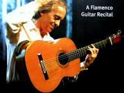 アマ フラメンコギタリストです