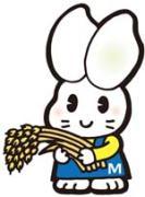 秋田のおいしい美郷米