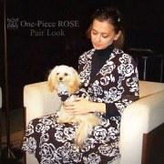オリエンタルキュートな犬服やさん「Bonita Dog」