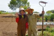 うさぎ夫婦の農業への道〜熊本で農家始めます〜
