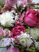 Spontaneous Flowerさんのプロフィール
