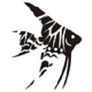 Freshwater angelfish&Diary