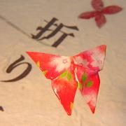 Satoko's Origami Diary