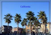 California的生活
