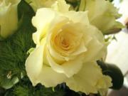 ルーシュの花仕事