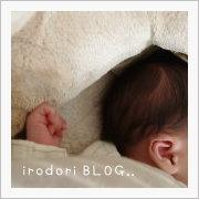 IRODORI BLOG
