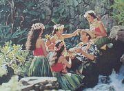 ゆるゆる湘南〜'olu'olu Hawai'i