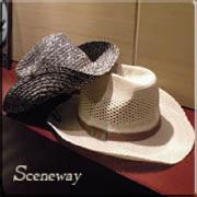 Scenewayさんのプロフィール