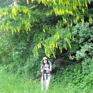 イタリア写真草子 - Fotoblog da Perugia