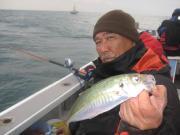 四季の魚を釣って食べる