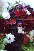 花芝翫のつれづれブログ