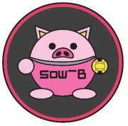 SOW-B ドッジボールクラブブログ