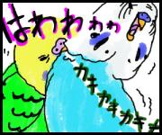 セキセイインコ漫画と小鳥山いん子の日々
