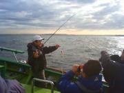 シロギス釣り:東京湾は今日も快釣