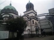 統一教会(統一協会)の被害者