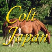 POG2014有力馬の馬体評価情報-POG!JAPAN/coltjapan