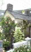 Re*cherche 『Antique&Garden』 ブログ