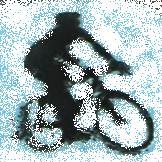 ディスカスな休日 自転車編