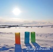 baby's-breath