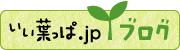 いい葉っぱ.jpブログ〜観葉植物最前線〜