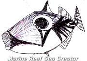 Sea creator weblog