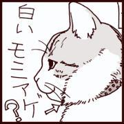 チューリップ王子☆文蔵(猫パンチTV GOLD!連載中)