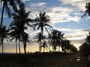 愛するアフリカでマルチリンガルな生活