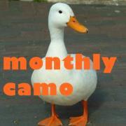 monthly camo