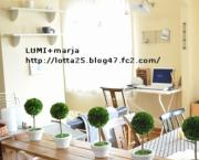 LUMI+marja  ルミ+マルヤ 北欧インテリアとyukkiの日常