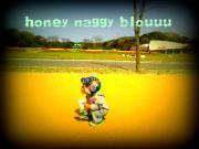 honey naggy bloguuu