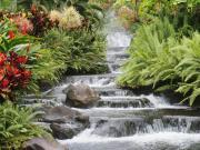 水素水がもたらす健康生活
