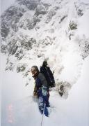 タカネビランジ‐高山植物とそこに生きる生物‐