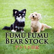fumufumuさんのプロフィール