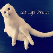 cat cafe Princeさんのプロフィール