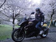 女大型バイク姫 2010 Z1000カワサキ (。・_・。)ノ