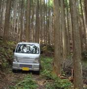 愛知の田舎で古民家暮らし