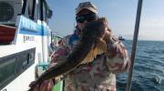 迷彩笠地蔵の『釣りに行ってます』