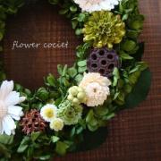 コッシェと花の毎日