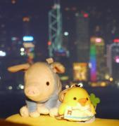 香港滞在記