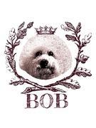 横浜伊勢佐木町の美容室 BOBのアフロ犬日記