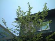 トヨオカ地建一級建築士事務所