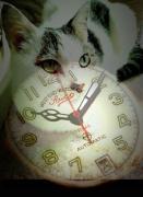 僕と猫と時計と・・・徒然なるままに・・・
